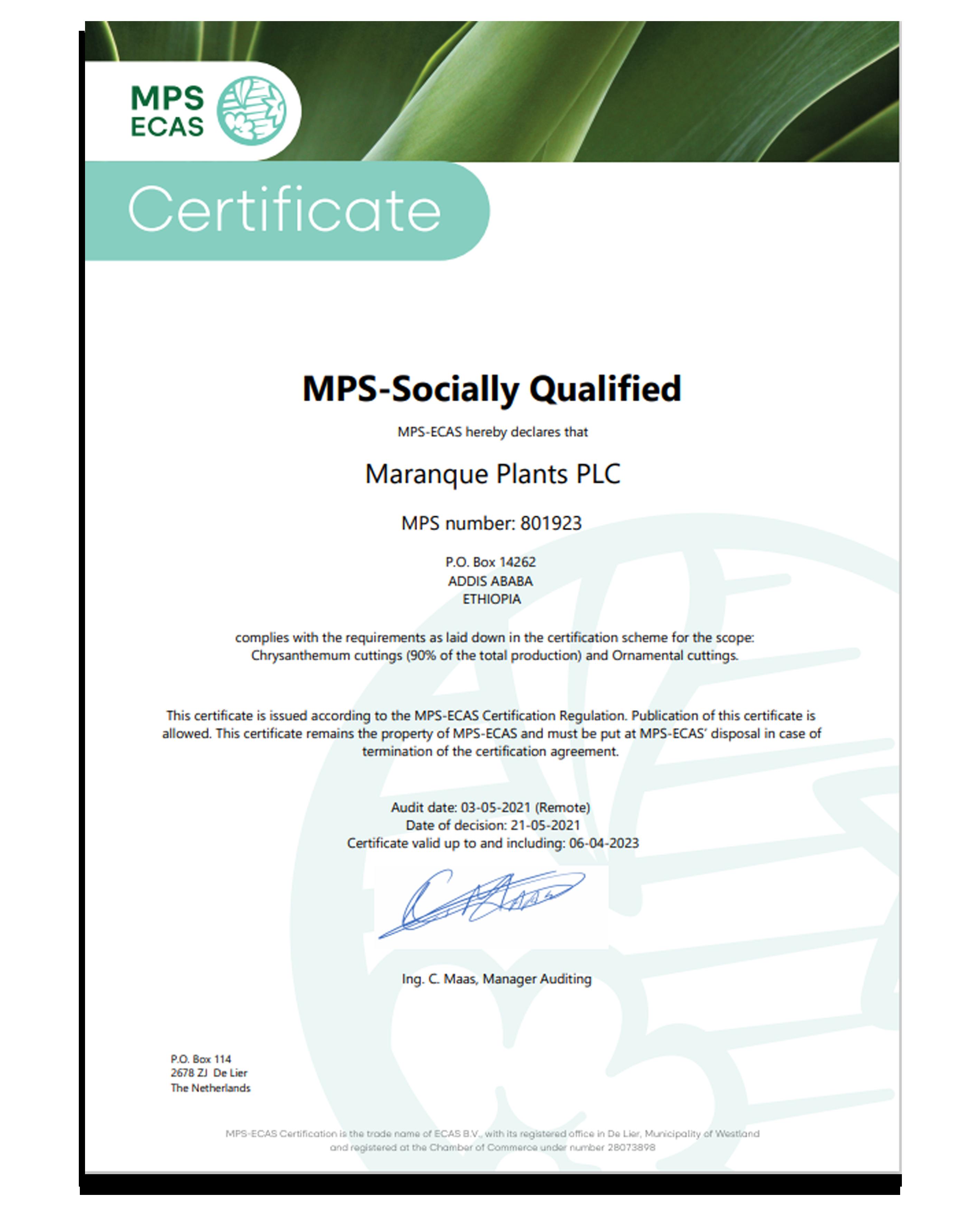 MPS-SQ Maranque