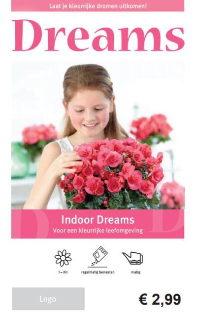 Begonia Indoor Price Tag