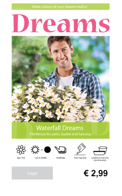 Begonia Waterfall Price Tag